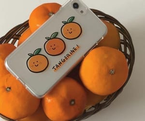 orange, aesthetic, and fruit image