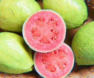 fruit, tropical, and guava image