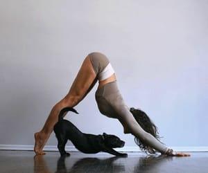 puppie, yoga, and cute image