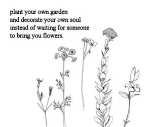flower, grow, and poetry image