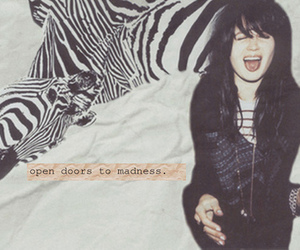 alison mosshart, quote, and text image