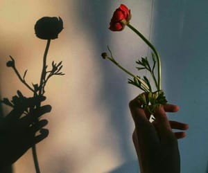nice animals, flowers children, and عبارت كتابات بلعربي image