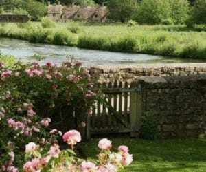 garden, nature, and river image