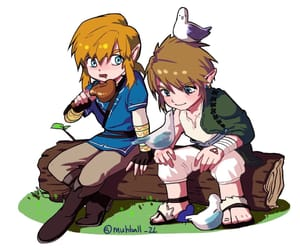 the legend of zelda, twilight princess, and breath of the wild image