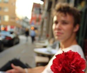 5sos, ashton irwin, and flowers image