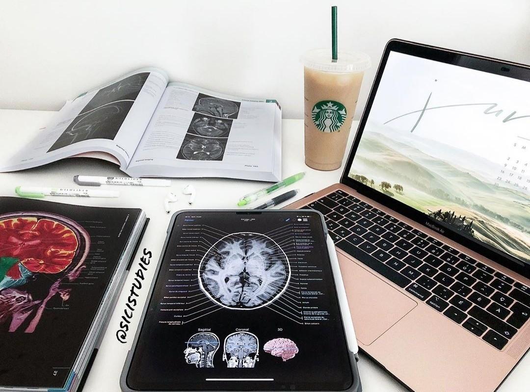 brain, college, and homework image