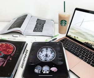 brain, college, and homework image