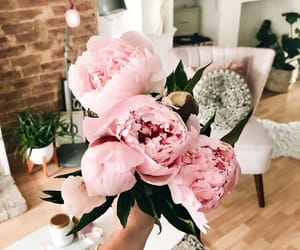 flowers, home, and inspiration image