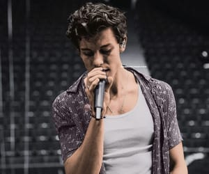 shawn mendes and vancouver image