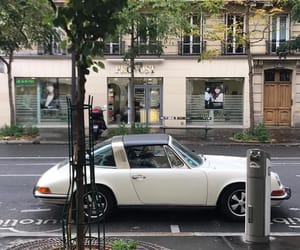 aesthetics, plants, and street image
