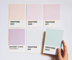 pastel, pantone, and aesthetic image