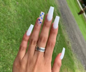butterflies, long nails, and nails image