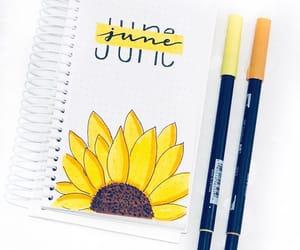 june, sunflower, and yellow image