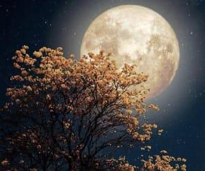 aesthetic, moon, and beautiful image