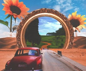 flower, indie, and car image