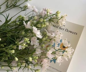 flowers, aesthetic, and book image