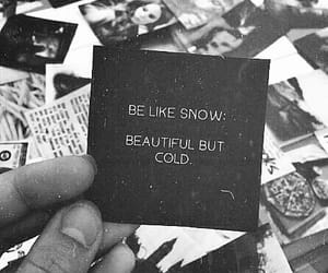 quotes, beautiful, and cold image