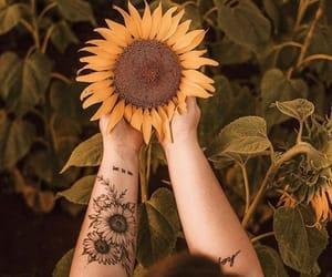 sunflower, tattoo, and flowers image
