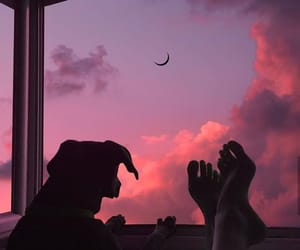 sky, dog, and sunset image