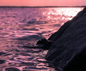 sea, water, and pink image