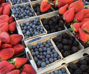 blueberries, colorful, and delicious image
