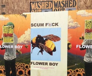 flower boy and tumblr image