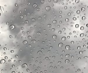 grey, rainy, and soft image