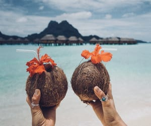 ocean, summer, and vacation image