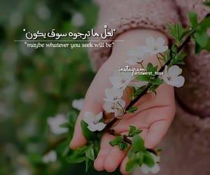 ًورد, floweret_hope, and اسلام ، اسلاميات image