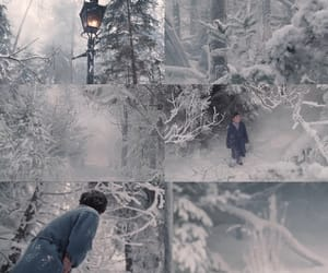 edmund pevensie, the lion the witch and the wardrobe, and narnia image