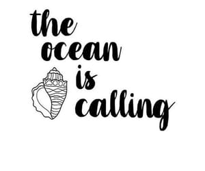 ocean, quotes, and seashell image