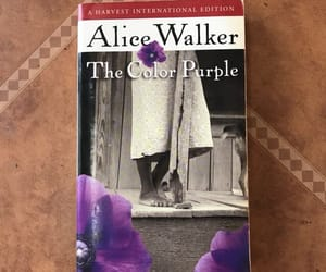 alice, story, and amazing image