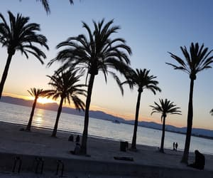 beach, mallorca, and water image