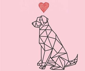 dog, life, and tatto image