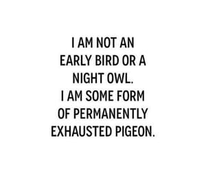 quotes, funny, and tired image