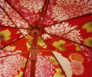 flowers, red, and umbrella image