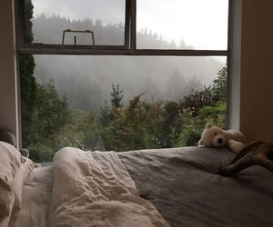 home, nature, and room image
