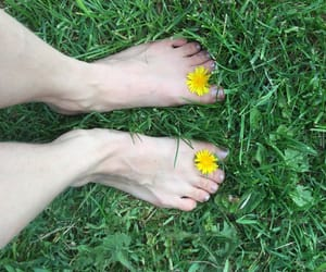 bare feet, summer, and grass image
