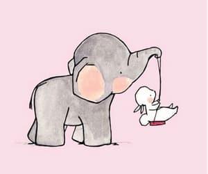 animals, elephant, and rabbit image