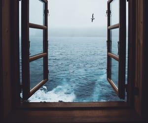 window, beautiful, and nature image