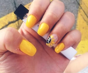 nails, summer, and sunflower image