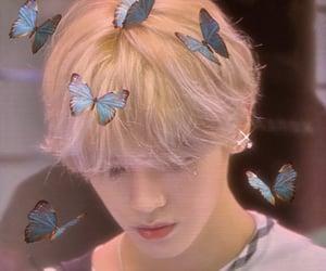 kpop, lee taeyong, and nct edits image
