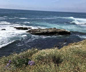 beach, california, and photography image