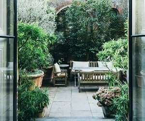 garden, green, and plant image