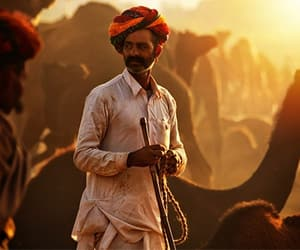 rajasthan tour package and rajasthan travel package image