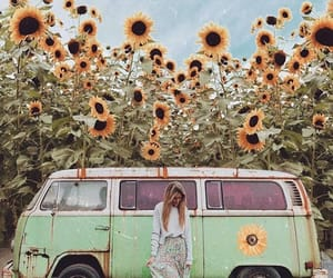 girl, summer, and sunflowers image