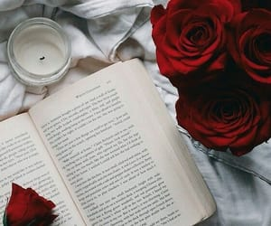 book, read, and roses image