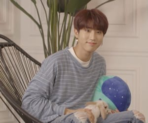 han, jisung, and stray kids image