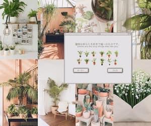 kim, plants, and wallpaper image