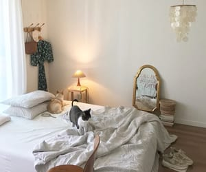 aesthetic, bedroom, and cat image
